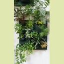 "Mur végétal d'intérieur ""Flowall"" garni avec 16 plantes"