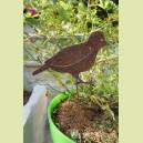 Tuteur oiseau